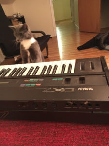 Cat and DX7