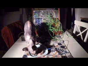 Cat Food Synthesizer