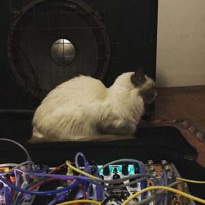 meezer and modular