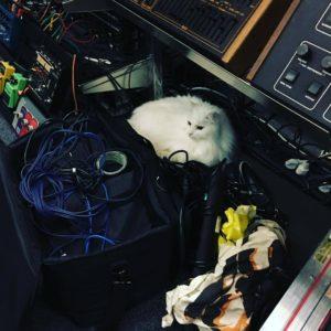 White at in Studio