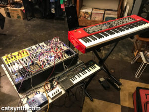 Amanda Chaudhary setup for show with Nord and modular