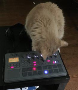 Leo making beats on electribe