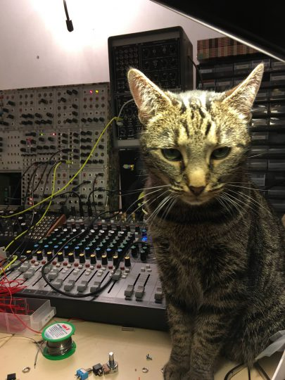 Cat and Mutable Instruments