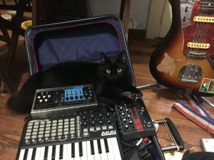 Black cat with Akai, Eventide, Electro-Harmonix