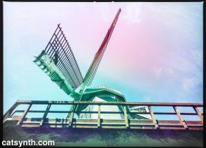 Murphy Windmill, Golden Gate Park