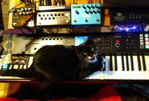 Stash and synthesizers