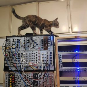 Lilly and the modular