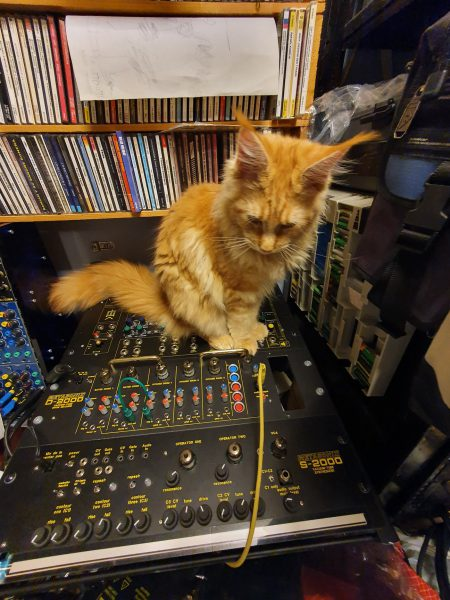 Sniff the cat with a Metsonix S-2000 and D-2000