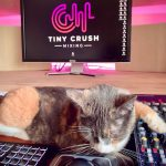 TinyCrush Mixing