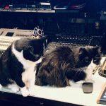 Blixa and Sasha in the Studio (Roland and Arturia)