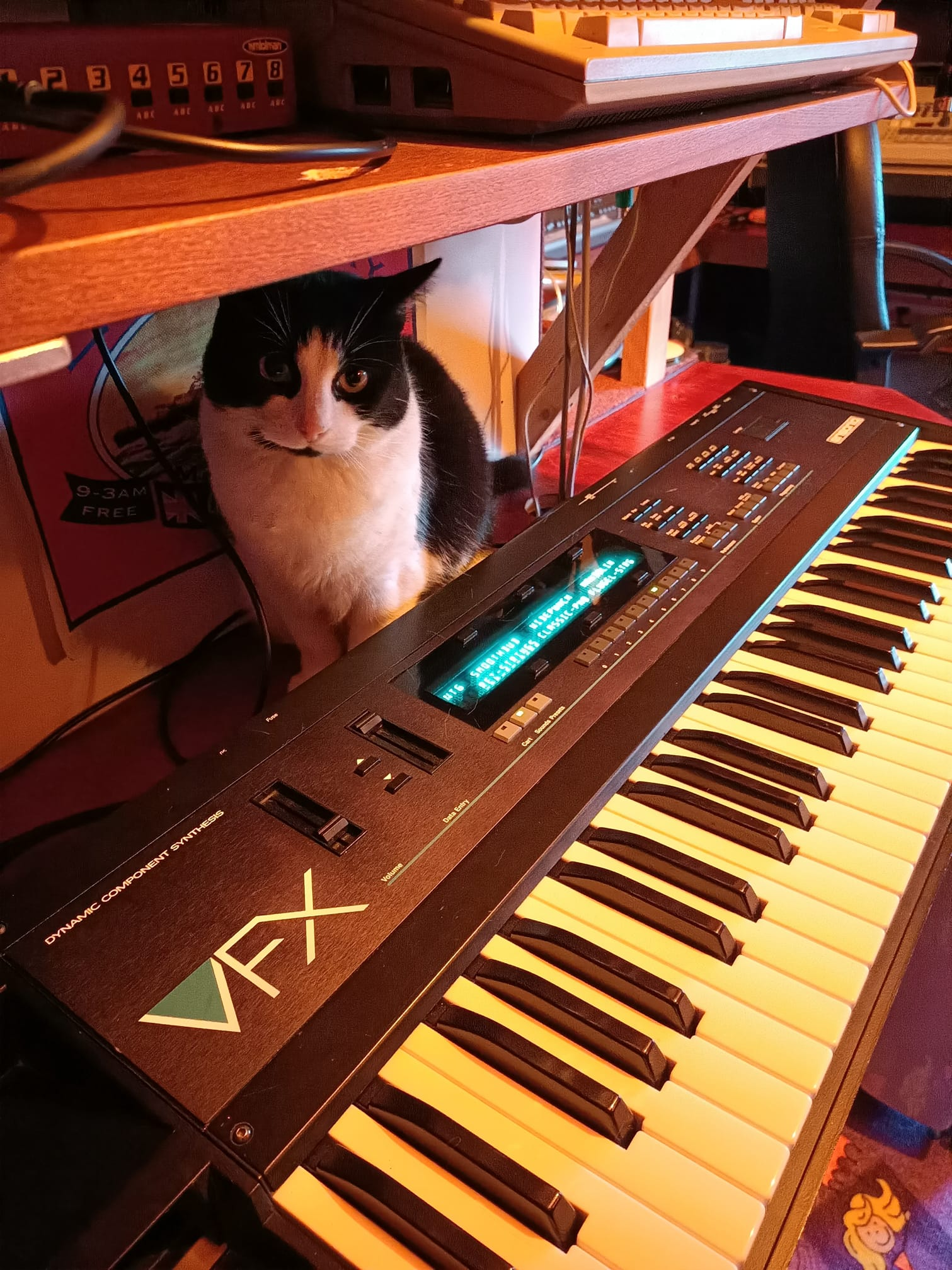 Pinkie the cat and Ensoniq VFX
