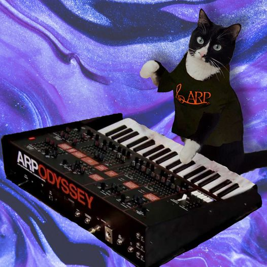 Cat with an orange and black ARP t-shirt and an orange-and-black ARP Odyssey